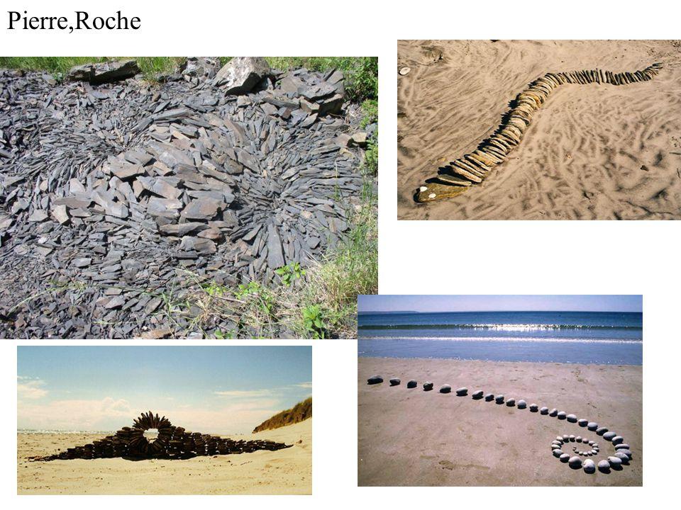 Pierre,Roche