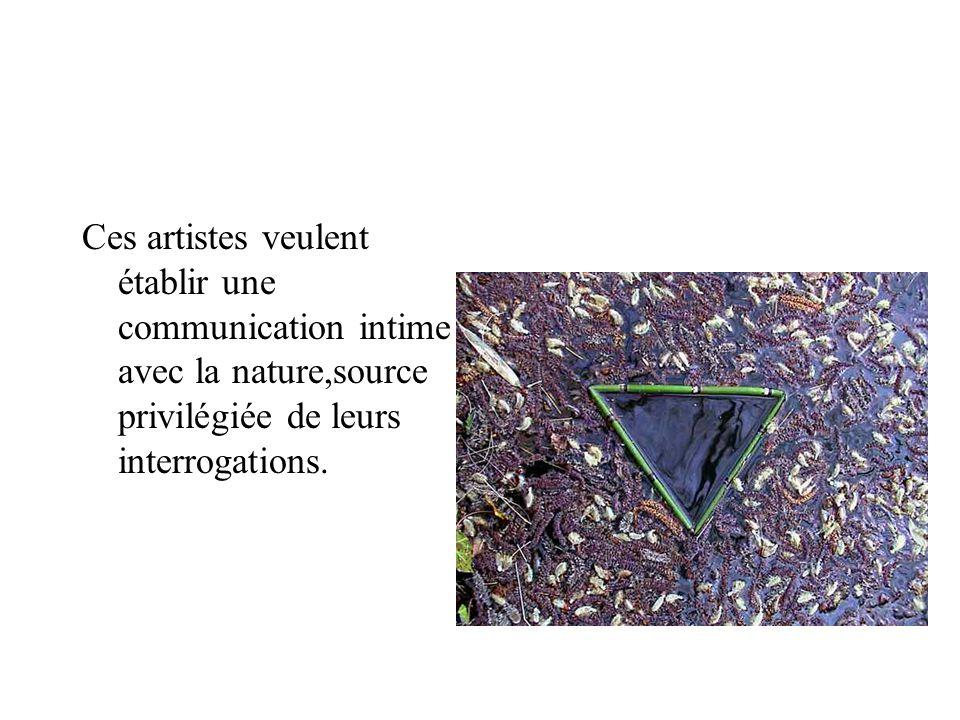 Ces artistes veulent établir une communication intime avec la nature,source privilégiée de leurs interrogations.