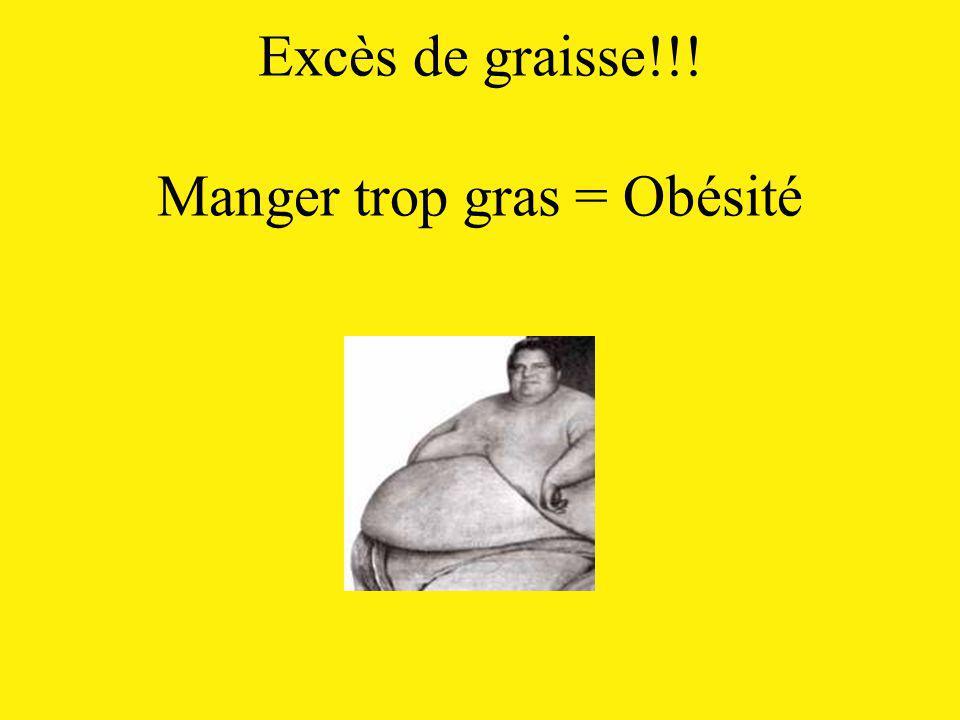 Excès de graisse!!! Manger trop gras = Obésité