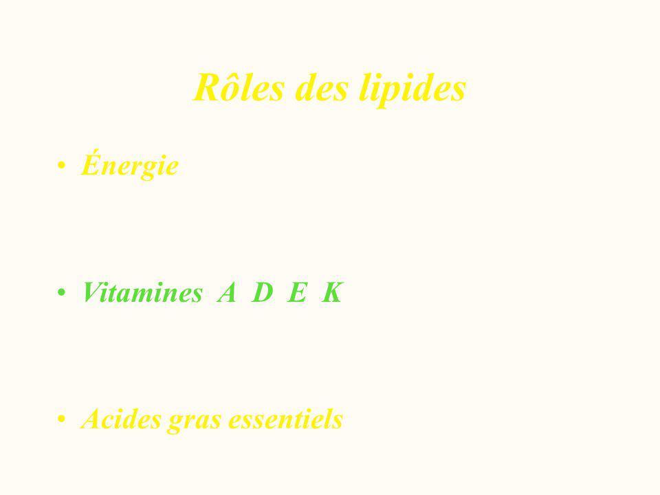 Rôles des lipides Énergie Vitamines A D E K Acides gras essentiels