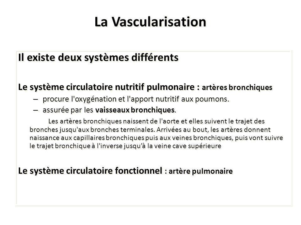 La Vascularisation Il existe deux systèmes différents
