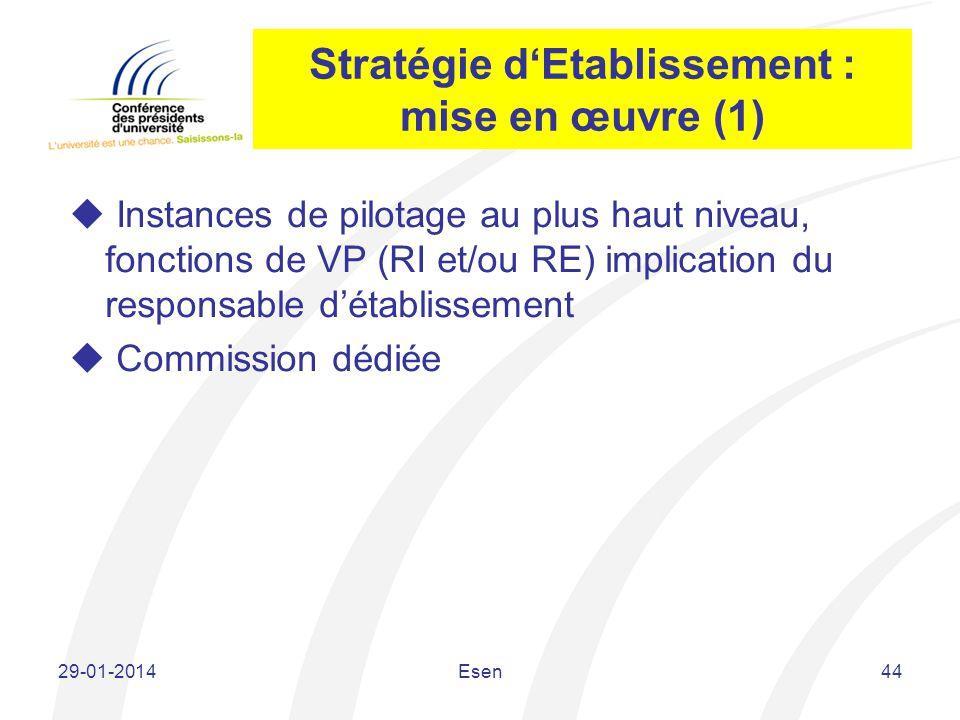 Stratégie d'Etablissement : mise en œuvre (1)