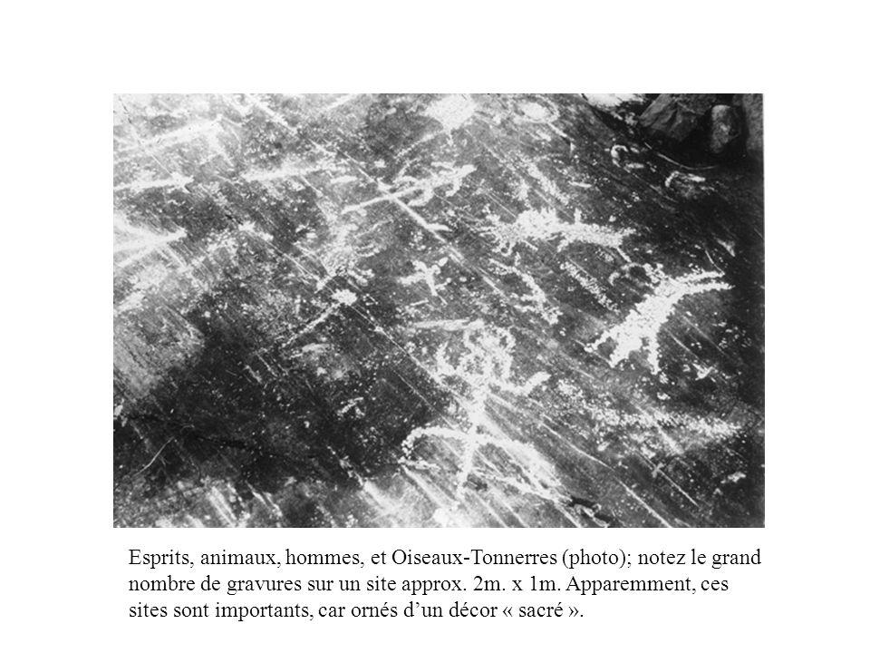Esprits, animaux, hommes, et Oiseaux-Tonnerres (photo); notez le grand nombre de gravures sur un site approx.
