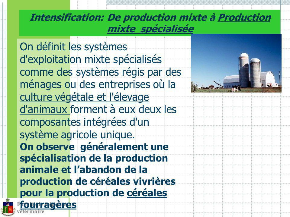 Intensification: De production mixte à Production mixte spécialisée