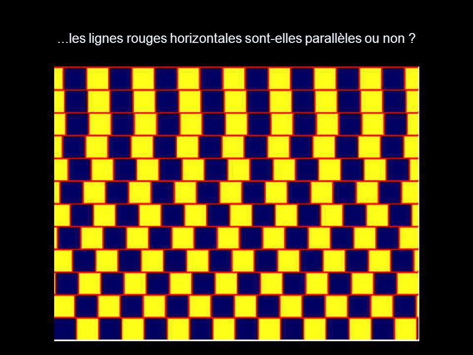 ...les lignes rouges horizontales sont-elles parallèles ou non