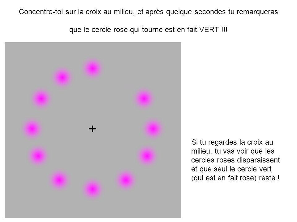 Concentre-toi sur la croix au milieu, et après quelque secondes tu remarqueras que le cercle rose qui tourne est en fait VERT !!!