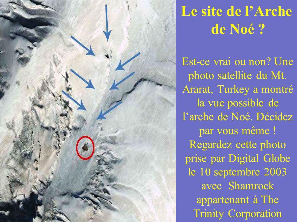 Le site de l'Arche de Noé