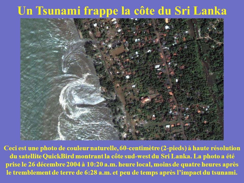 Un Tsunami frappe la côte du Sri Lanka