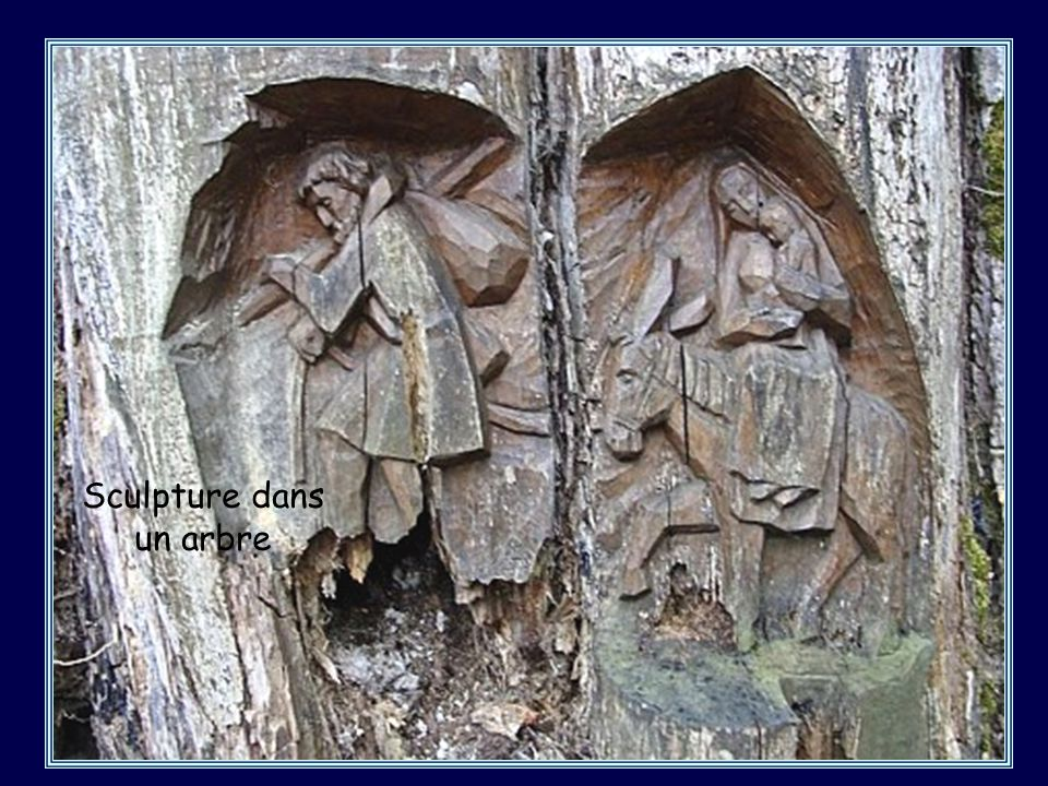 Sculpture dans un arbre