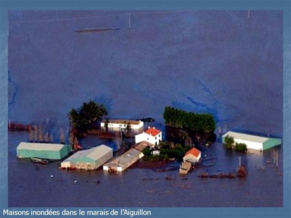 Maisons inondées dans le marais de l'Aiguillon