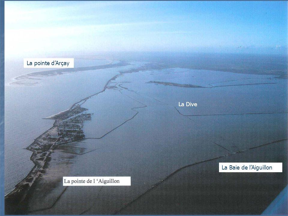 La pointe d'Arçay La Dive La Baie de l'Aiguillon
