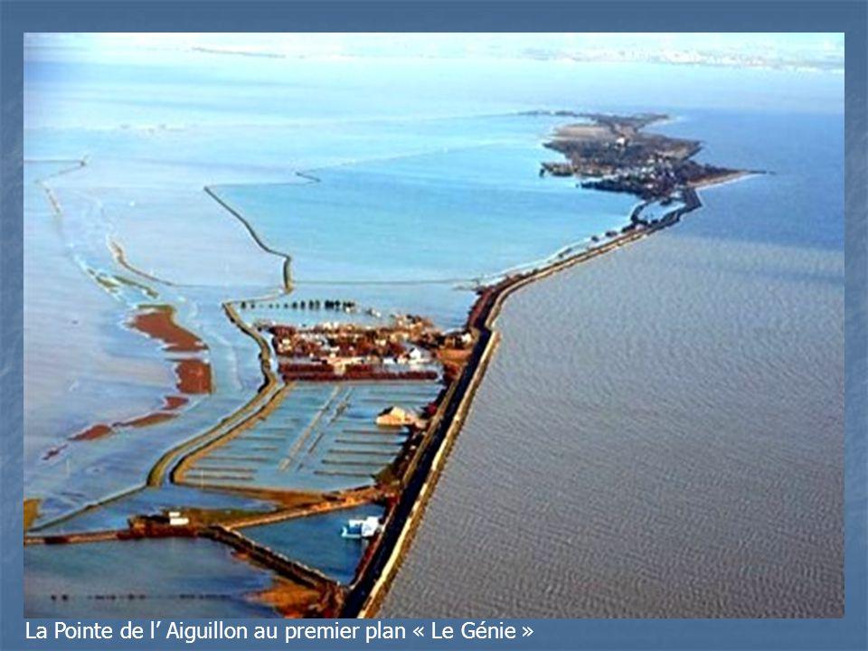 La Pointe de l' Aiguillon au premier plan « Le Génie »