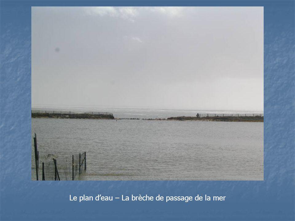 Le plan d'eau – La brèche de passage de la mer