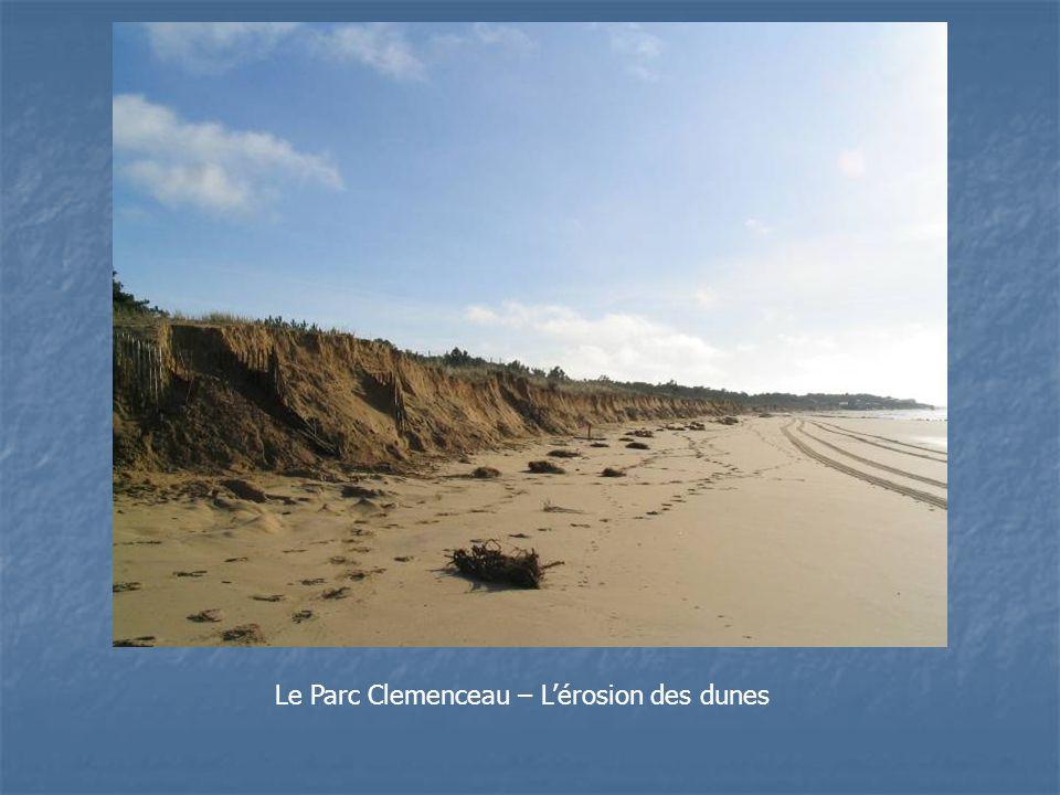 Le Parc Clemenceau – L'érosion des dunes