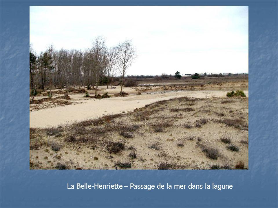 La Belle-Henriette – Passage de la mer dans la lagune