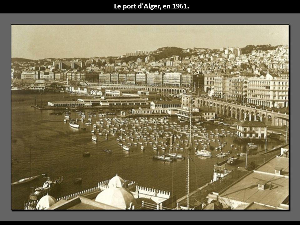 Le port d Alger, en 1961.
