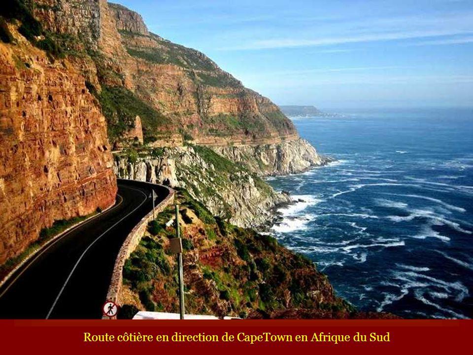 Route côtière en direction de CapeTown en Afrique du Sud