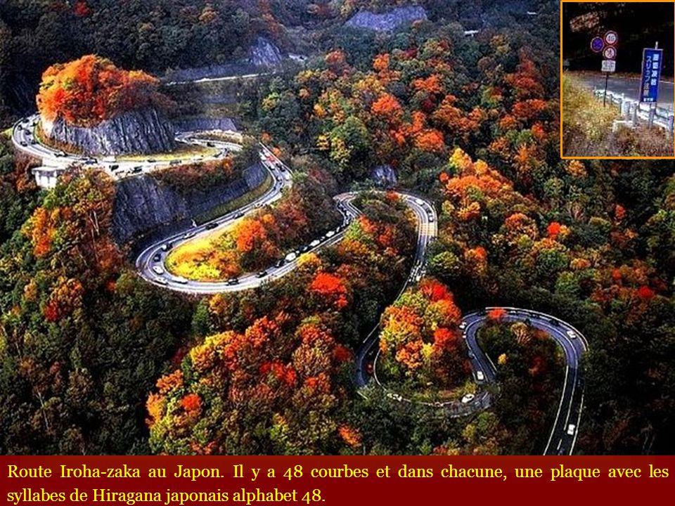 Route Iroha-zaka au Japon
