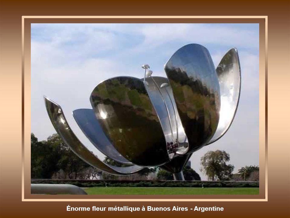 Énorme fleur métallique à Buenos Aires - Argentine