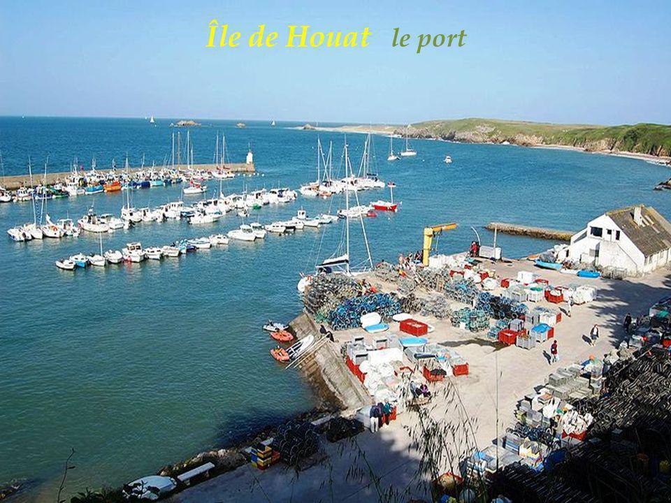 Île de Houat le port