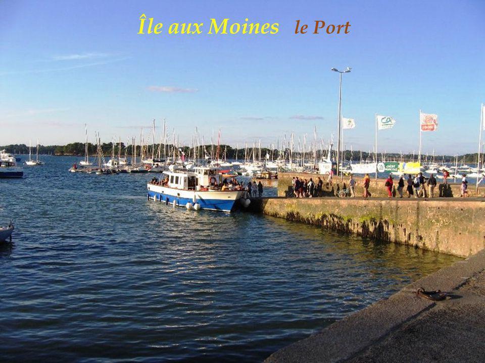 Île aux Moines le Port