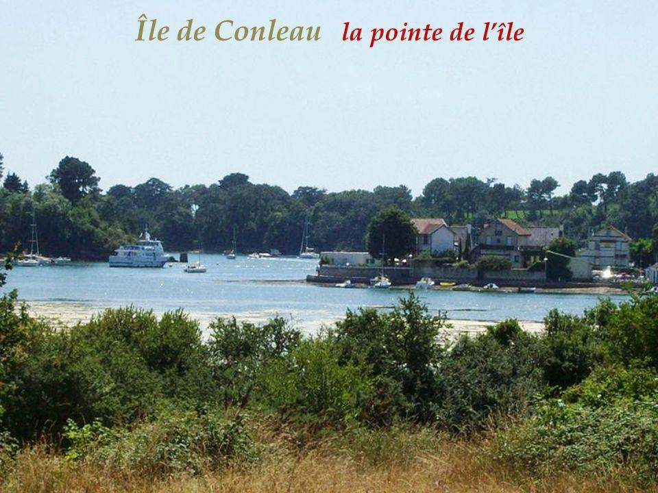 Île de Conleau la pointe de l'île
