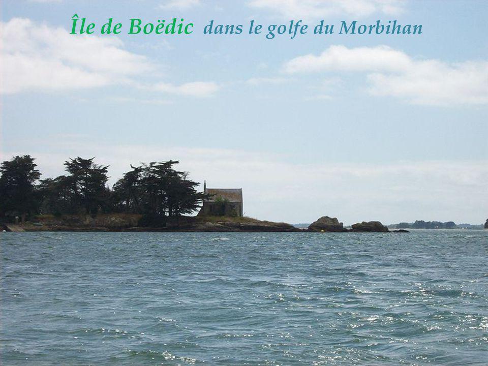 Île de Boëdic dans le golfe du Morbihan