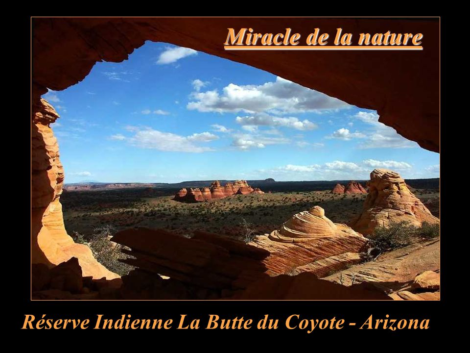 Miracle de la nature Réserve Indienne La Butte du Coyote - Arizona