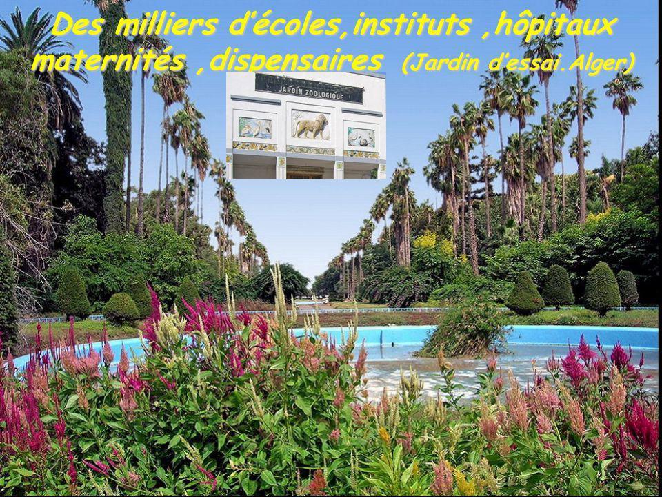 Des milliers d'écoles,instituts ,hôpitaux maternités ,dispensaires (Jardin d'essai.Alger)