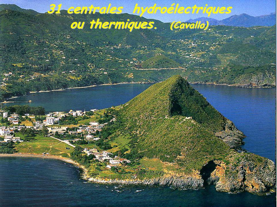 31 centrales hydroélectriques ou thermiques. (Cavallo)