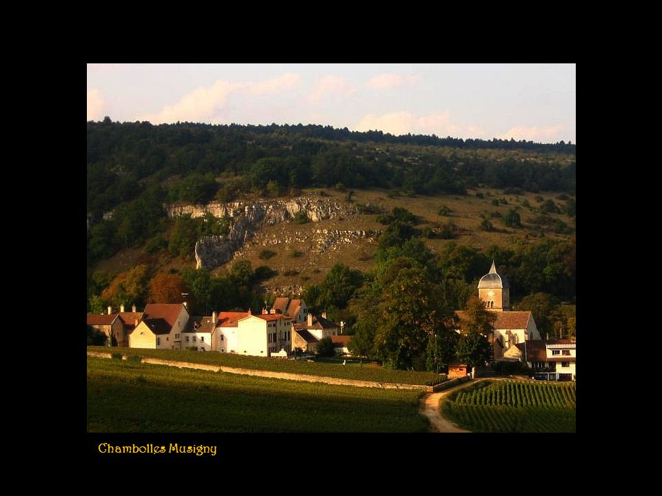 Chambolles Musigny
