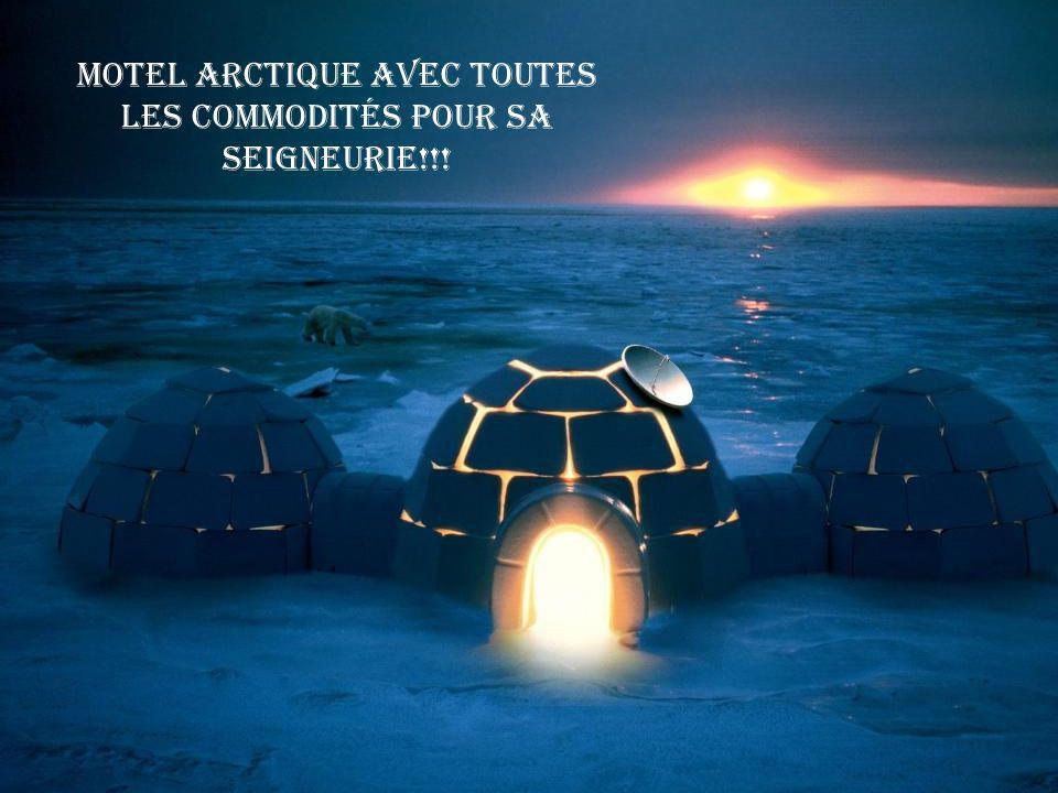 Motel Arctique avec toutes les commodités pour sa Seigneurie!!!