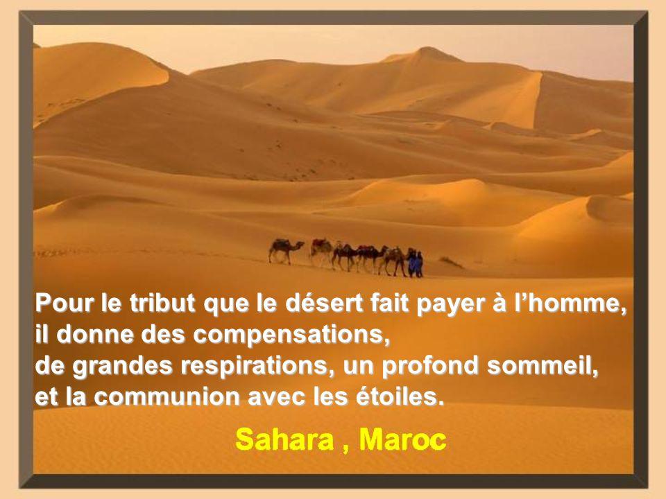 Pour le tribut que le désert fait payer à l'homme, il donne des compensations,