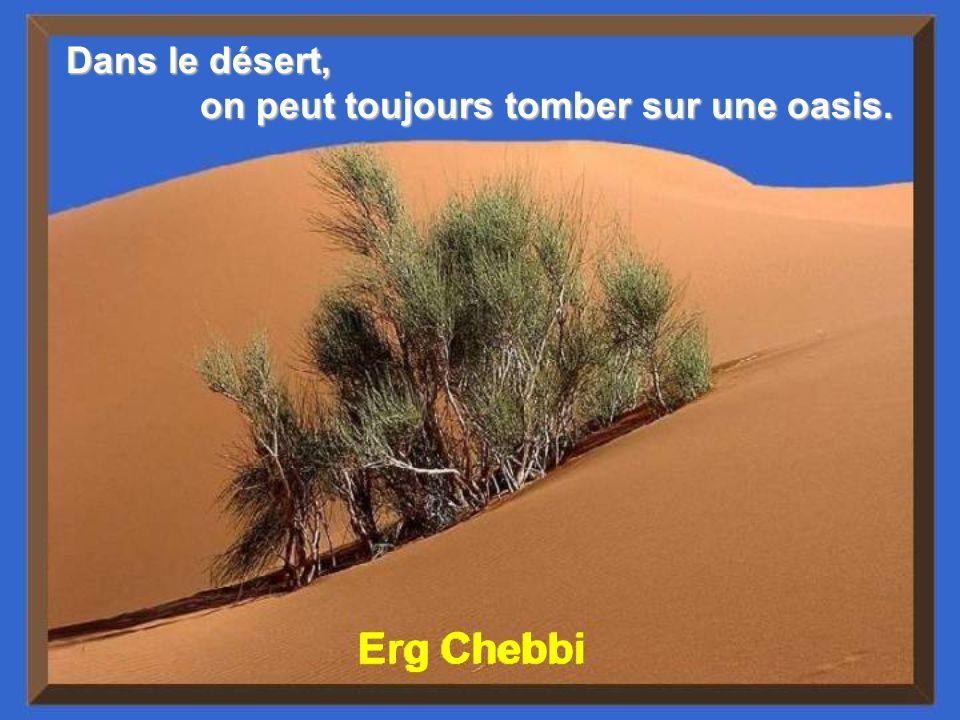 Dans le désert, on peut toujours tomber sur une oasis. Erg Chebbi