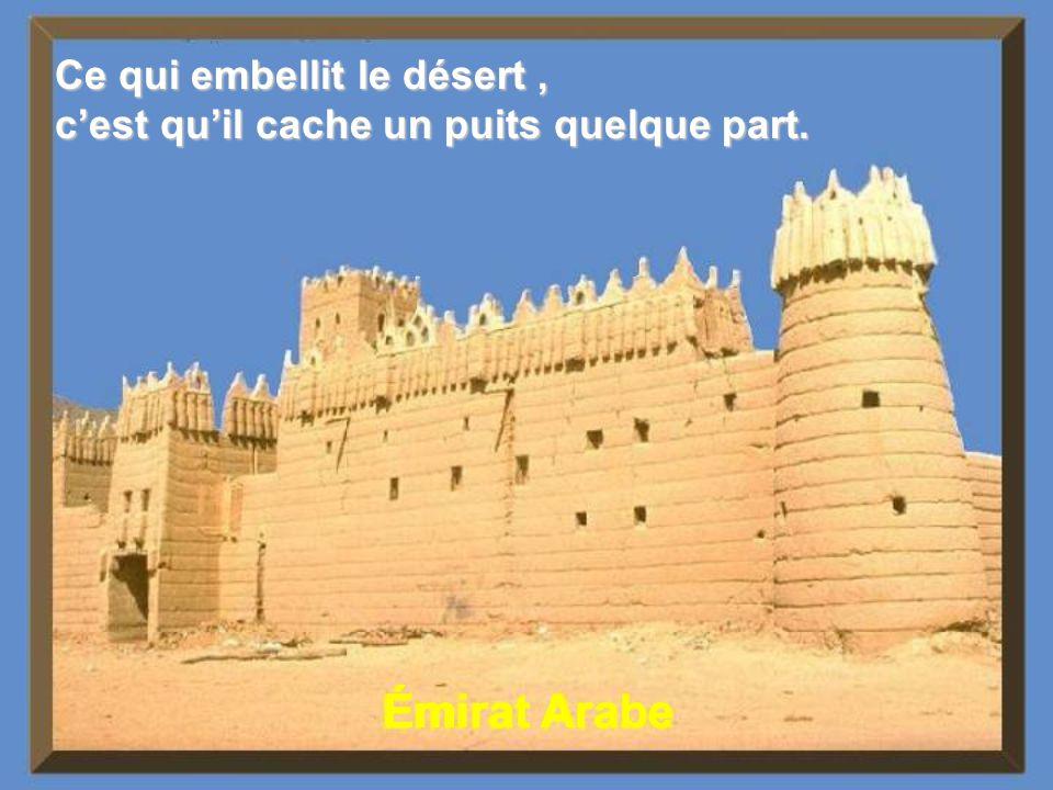 Émirat Arabe Ce qui embellit le désert ,