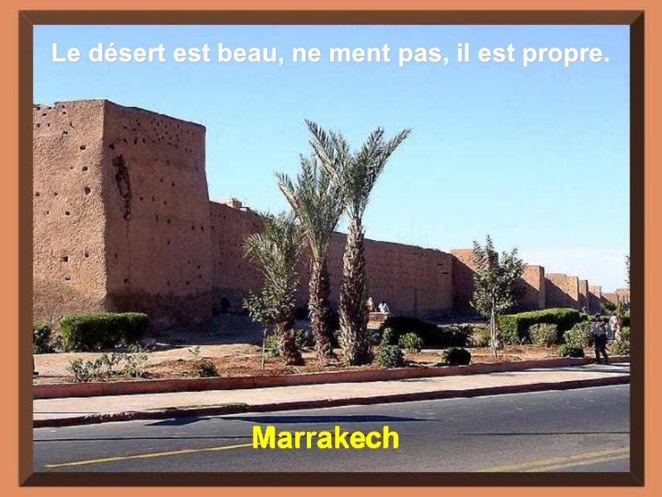 Le désert est beau, ne ment pas, il est propre.