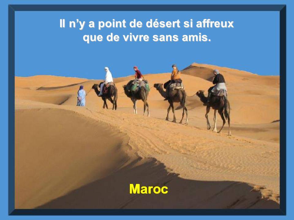 Il n'y a point de désert si affreux