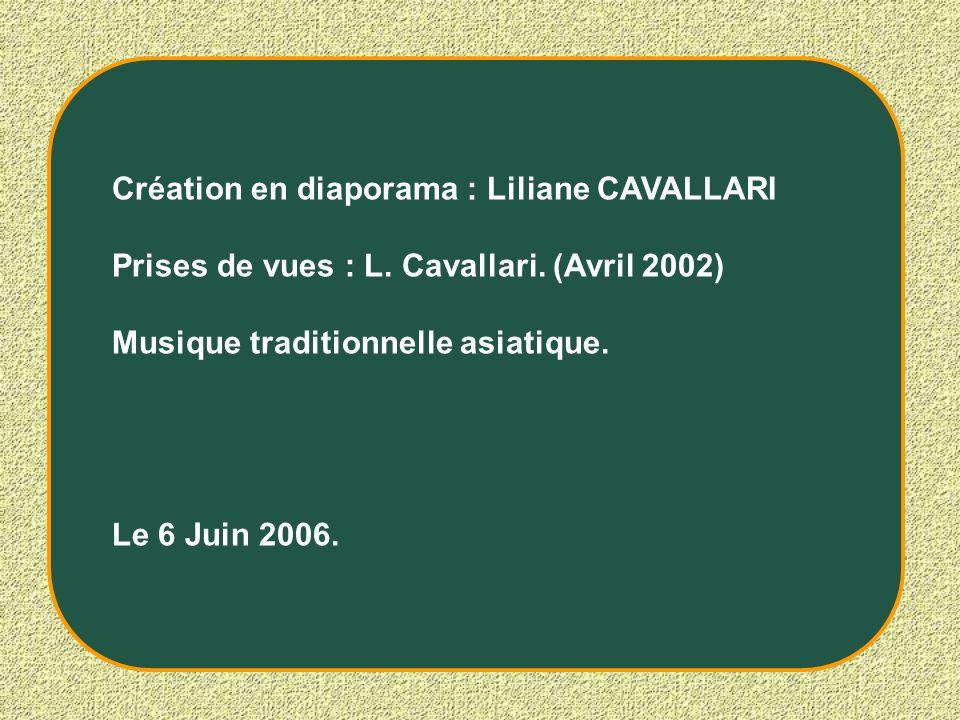 Création en diaporama : Liliane CAVALLARI