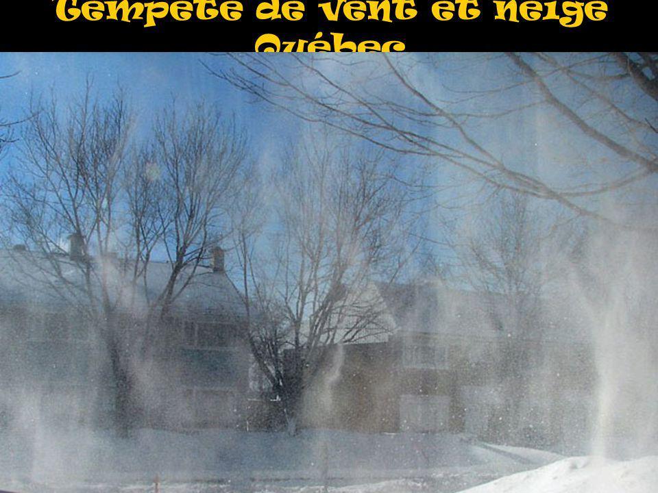 Tempête de vent et neige Québec
