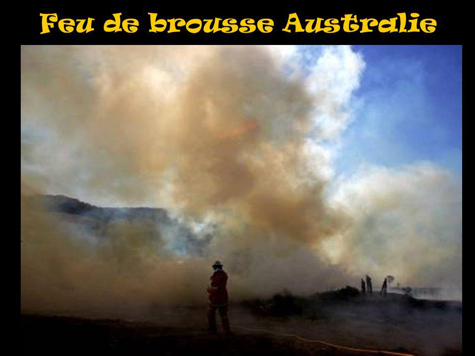 Feu de brousse Australie