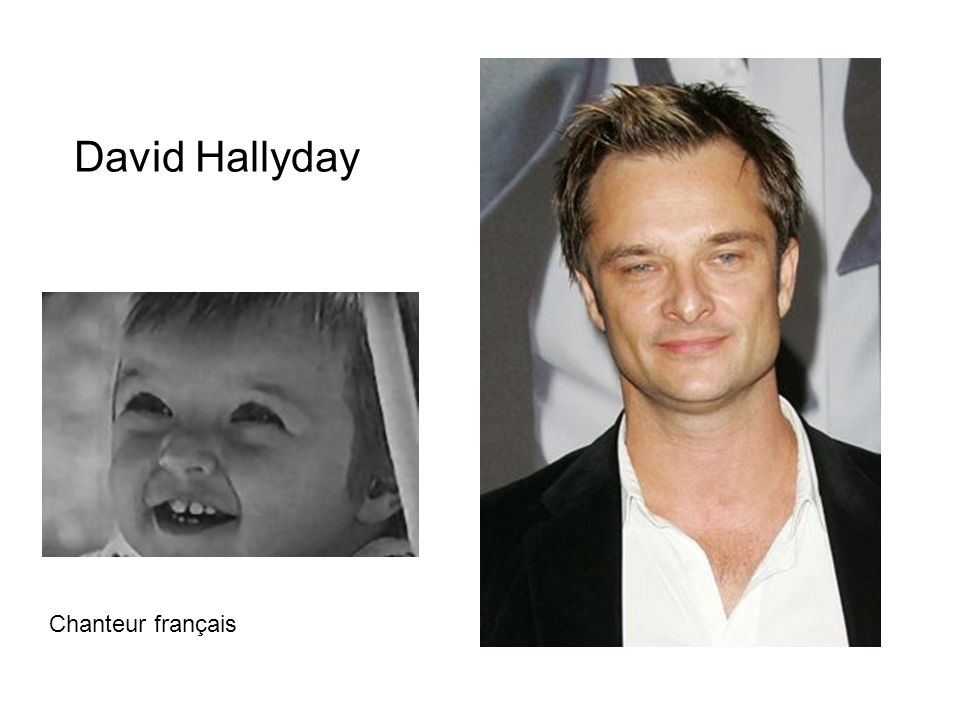 David Hallyday Chanteur français