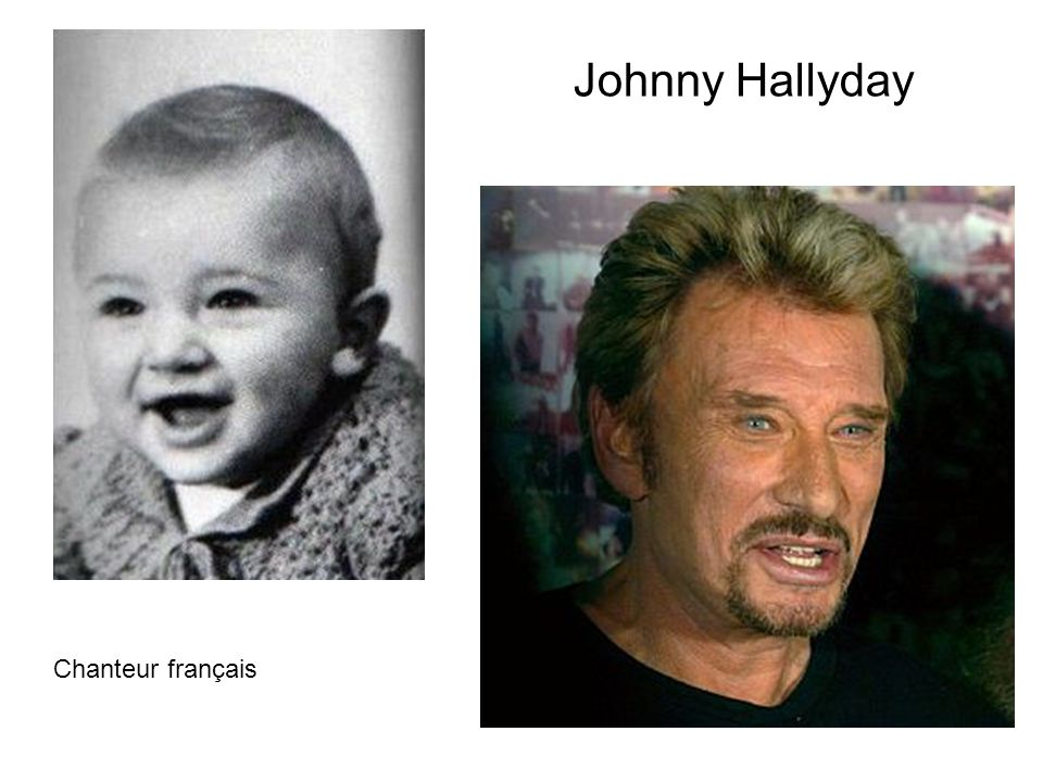 Johnny Hallyday Chanteur français