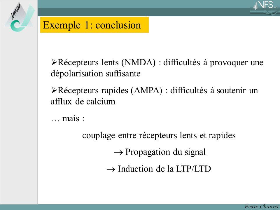 Exemple 1: conclusion Récepteurs lents (NMDA) : difficultés à provoquer une dépolarisation suffisante.