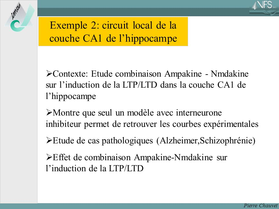 Exemple 2: circuit local de la couche CA1 de l'hippocampe