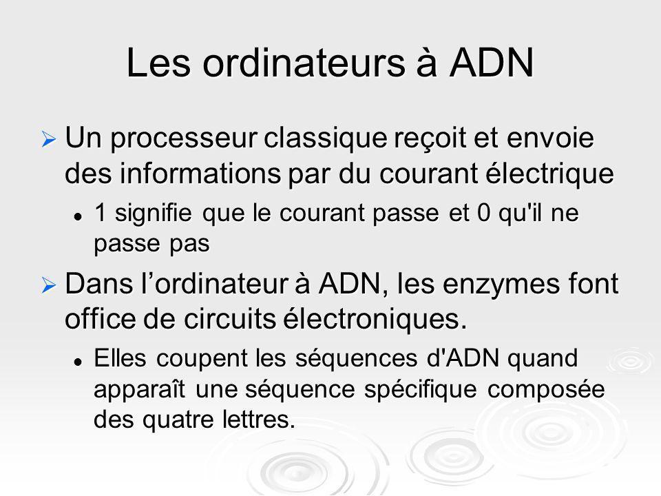 Les ordinateurs à ADN Un processeur classique reçoit et envoie des informations par du courant électrique.