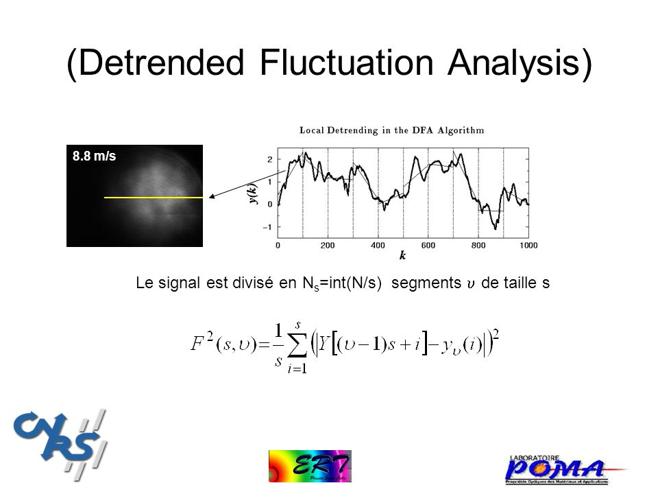(Detrended Fluctuation Analysis)