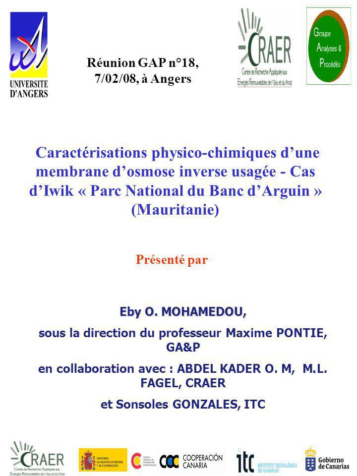 Réunion GAP n°18, 7/02/08, à Angers.