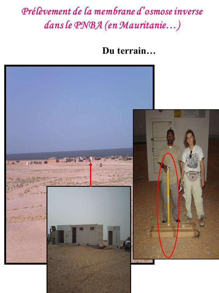 Prélèvement de la membrane d'osmose inverse dans le PNBA (en Mauritanie…)