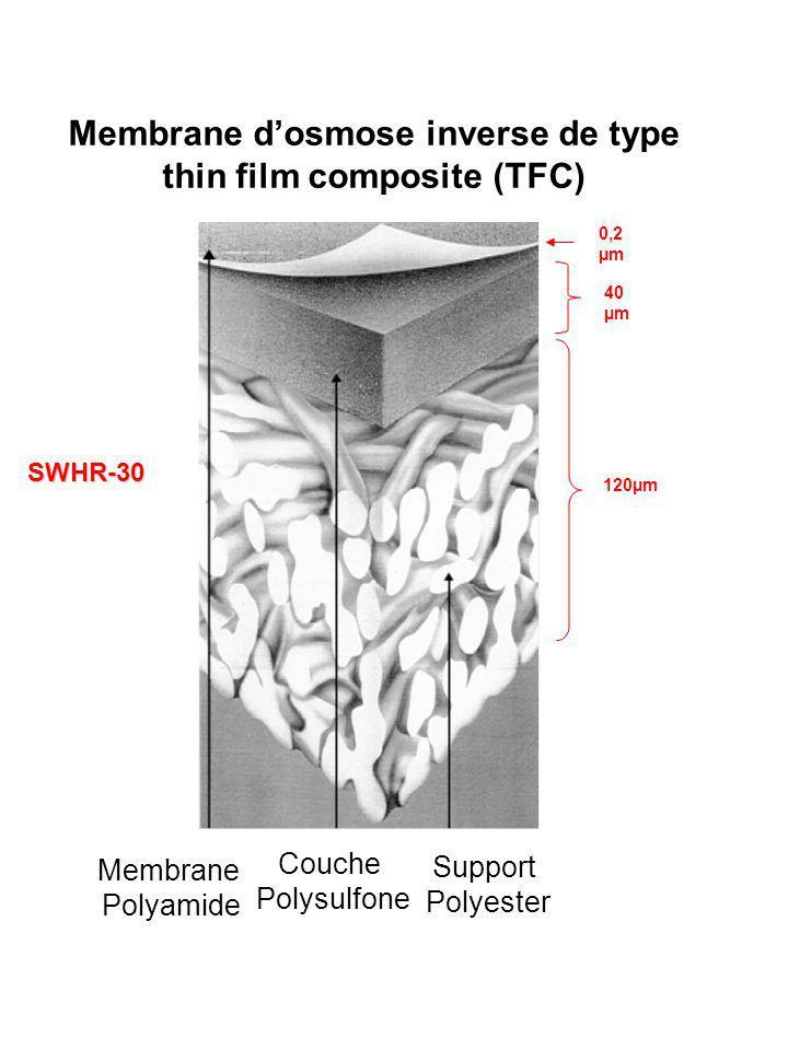 Membrane d'osmose inverse de type thin film composite (TFC)