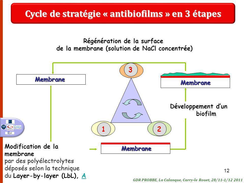 Cycle de stratégie « antibiofilms » en 3 étapes